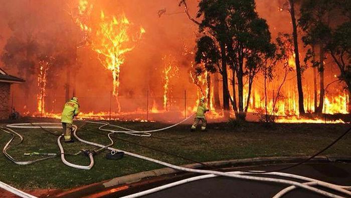 Австралия направит тысячи военных на тушение лесных пожаров